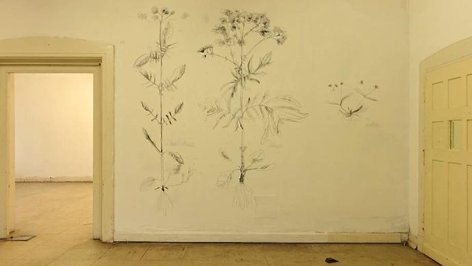 Herbarium - Lea Adriaans
